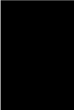 lima-barreto