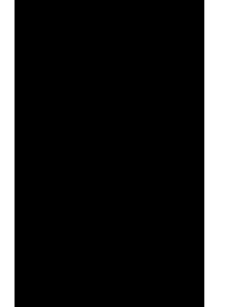 otto-lara-resende